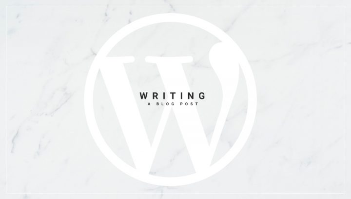 WordPress for begginers guide